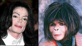 Parecidos razonables - Michael Jackson y Ari