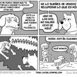 Lo que realmente pasa cuando creemos que los perros están jugando
