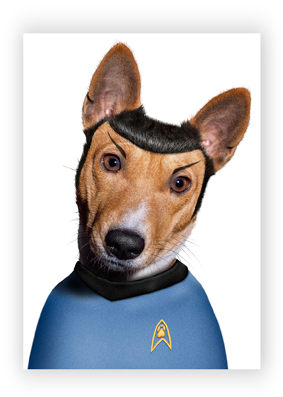 Spock-Perro