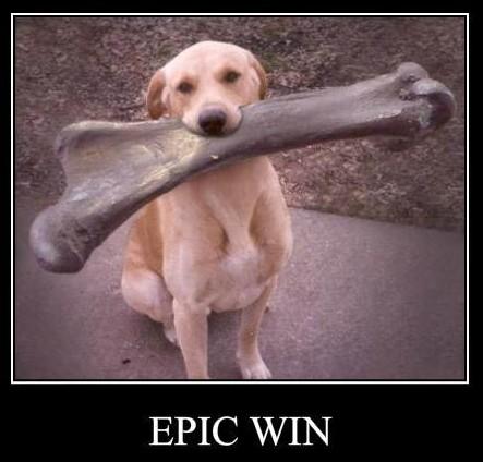 perro con hueso enorme - epic win