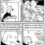 Misa para perros