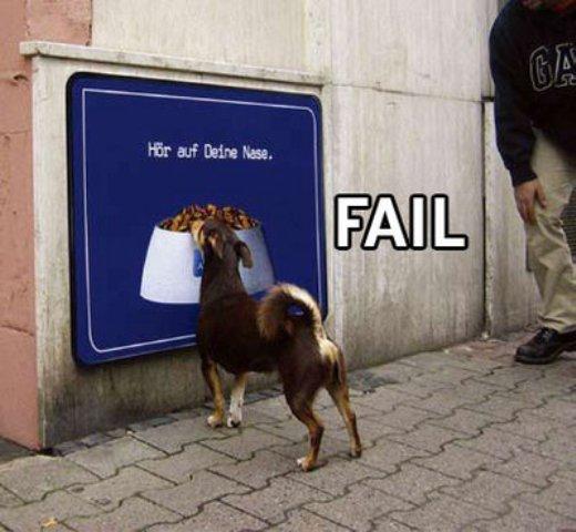 Perro - Fail
