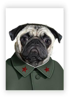 Perro - Mao Tse Tung