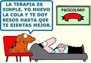 perro psicologo - la terapia es simple - yo muevo la cola y te doy besos hasta que te sientas mejor
