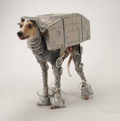 Cosplay AT-AT de Star wars para perro