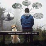 Por eso el perro es más feliz que tú