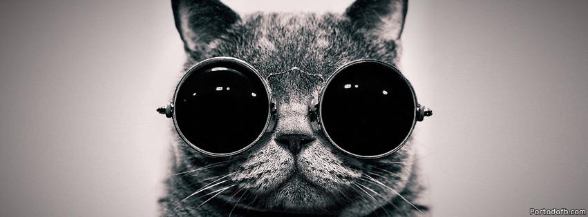 Portada Facebook - Gato con gafas