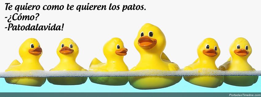 portada facebook - te quiero como los patos - patodalavida