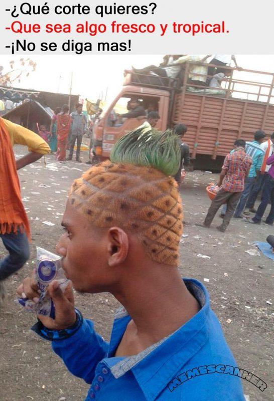 Hazme un corte de pelo fresco y tropical...