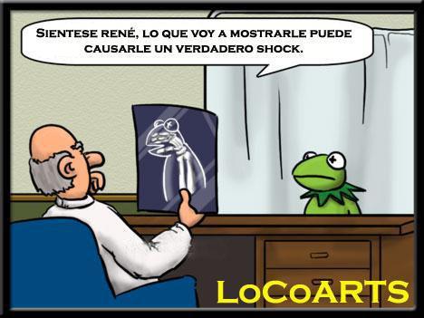 La rana Gustavo se hace una radiografía