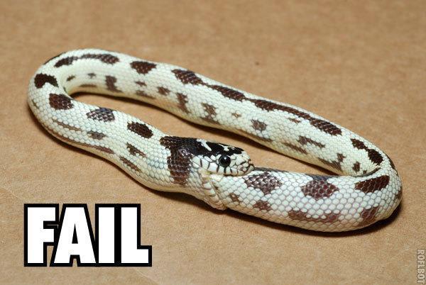 Serpiente fail