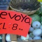 Sevoya barata
