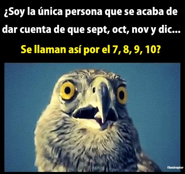 soy la unica persona que se acaba de dar cuenta de que septiembre octubre noviembre y diciembre se llaman asi por el 7 8 9 10