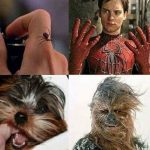 Si Spiderman se convirtió en Spiderman por una picadura de araña, entonces Chewbacca…