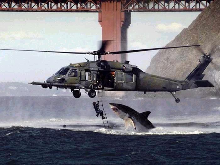 subiendo por escalera a helicoptero tiburon