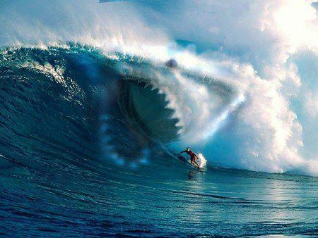 Ola-tiburón