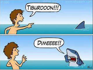 ¡¡¡¡Tiburón!!!!
