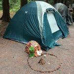 A los gatos también les gusta el camping