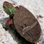 Tortuga ninja real