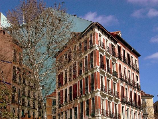 Trampantojo - Pared de edificio pintada