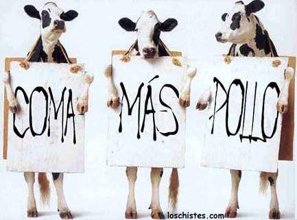 Las vacas salen a protestar