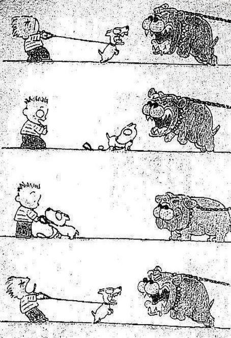 Valentía canina