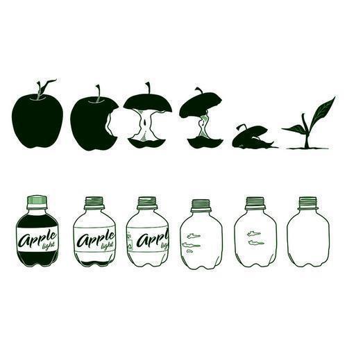 Vida de una manzana
