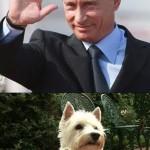 Putin saludando
