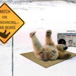 Watch for breakdancing polar bears